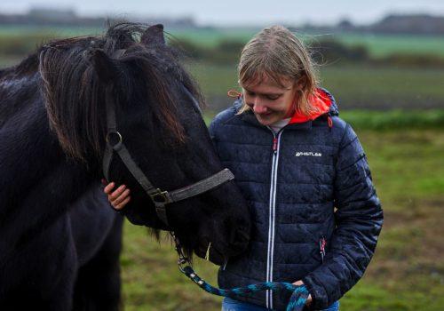 heste_linje